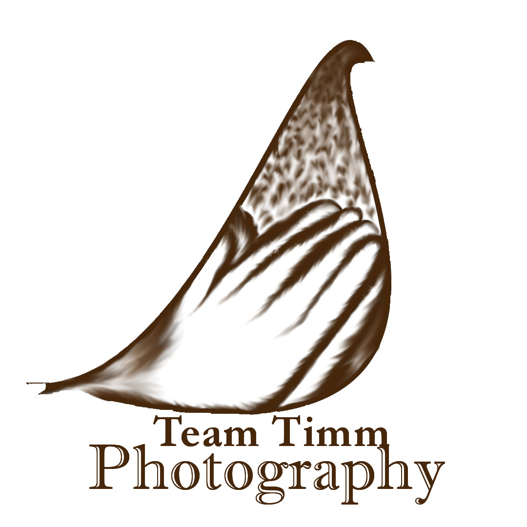 Team Timm Photography