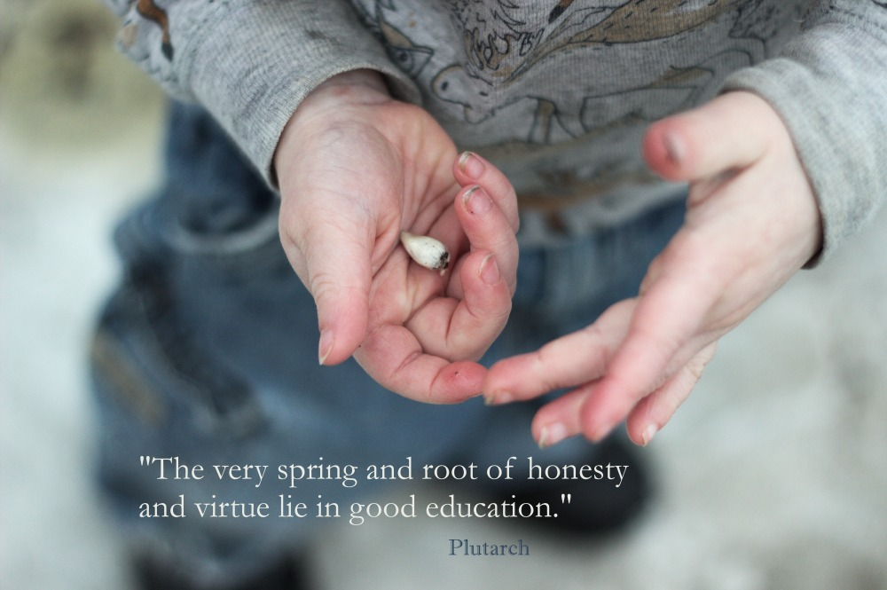 Spring Roots Education